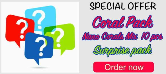 Super deal coral pack